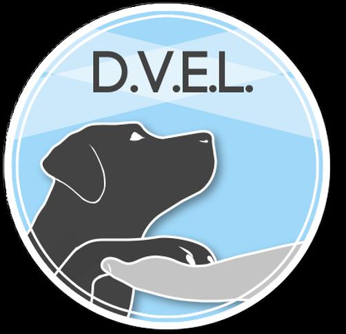 D.V.E.L.